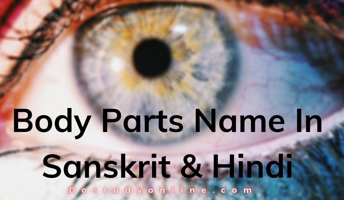 Body Parts Name In Sanskrit & Hindi