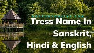 Tress Name In Sanskrit, Hindi & English